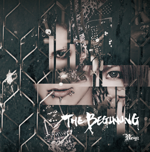 「THE BEGINNING」【Dtype 通常盤】